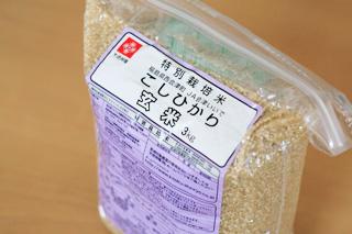 こしひかり玄米