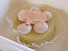 象ケーキ 桜のチーズケーキ